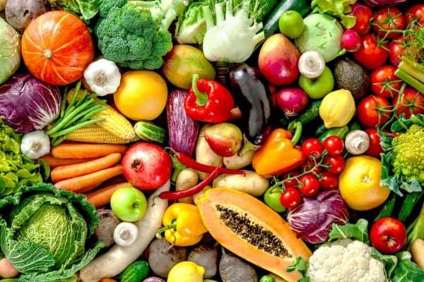 large assortment of vegetables