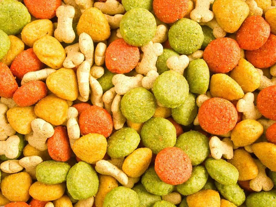 Assortment of dog food